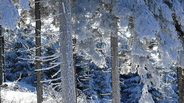 Orlické hory, ilustrační obrázek