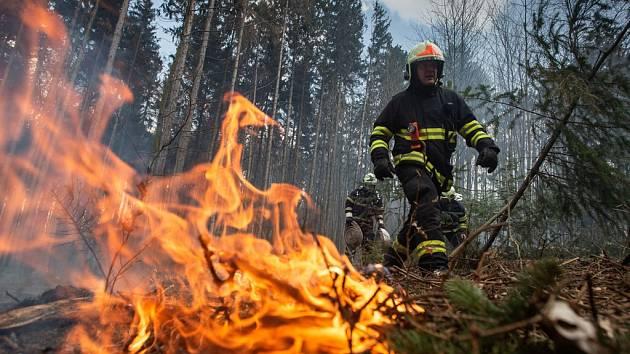 Jižní Morava v plamenech: hašení několika lesních požárů komplikuje silný vítr
