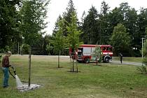 Zalévání trávníků a stromů v královéhradeckých Šimkových sadech.