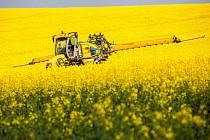 Zemědělci při postřiku pole s řepkou.