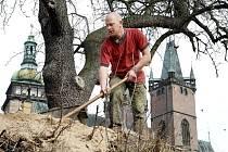 Průzkumem archeologů začala rekonstrukce další části historických hradeb pod kanovnickými domy nad zimním stadionem.