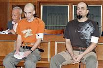 Dvojice výrobců a distributorů drog z Trutnovska stanula 9. zaří před senátem Krajského soudu v Hradci Králové. Hrozí jim tresty v rozpětí od dvou do dvanácti let.