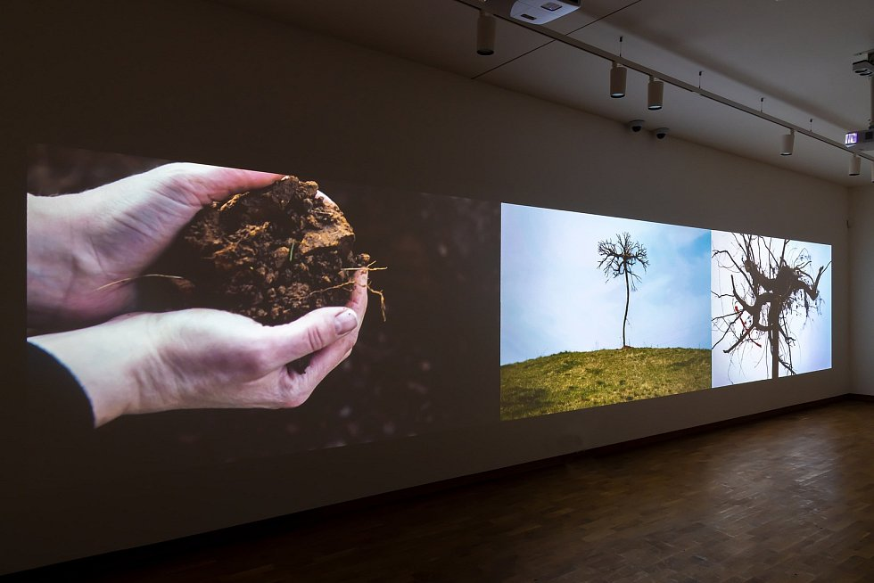 Galerie moderního umění otvírá pět nových výstav