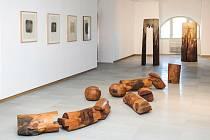 Výstava hradeckého rodáka Jiřího Hilmara
