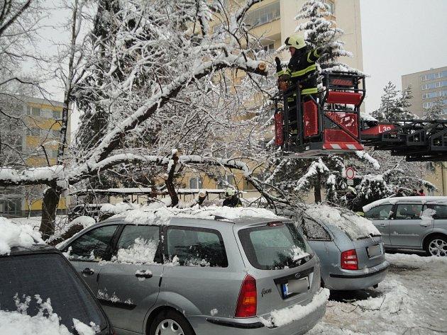 Vyvrácený strom ohrožoval automobily stojící na parkovišti v hradecké ulici Bratří Štefanů.