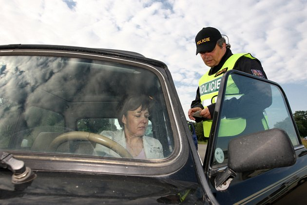 Cizinecká policie při kontrolním zásahu