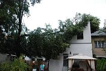 Větrná smršť nad Hradeckem trvala 23. 7. 2009 jen deset minut. Zanechala za sebou spoušť