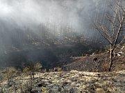 Jen během pondělního odpoledne vyjížděly jednotky požární ochrany na území Královéhradeckého kraje k sedmi případům požárů travního nebo lesního porostu.