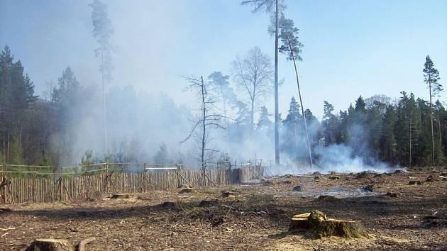 Požár lesní hrabanky