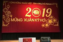 Oslava nového lunárního roku 2019, pořádaná Vietnamci v Hradci Králové.