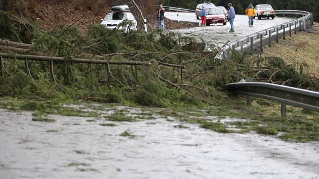 Větrná bouře Emma napáchala po celé republice obrovské škody. Foto z Orlickoústecka.