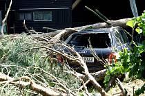 Vichřice v Královéhradeckém kraji lámala stromy.