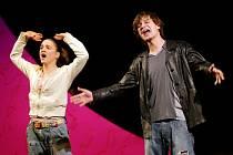 Pedagogové se 28. března sešli v hradeckém Klicperově divadle u příležitosti Dne učitelů. Jako hlavní program bylo připraveno divadelní představení Ještěři - nový muzikál.