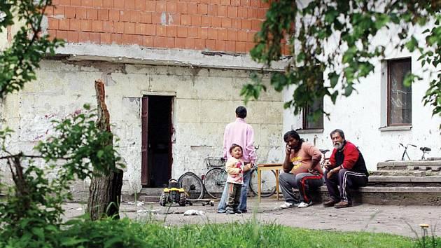 ŽLOUTENKA začala řádit vloni na podzim v hradecké Kydlinovské ulici. Ilustrační foto.