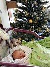 EMA KRPATOVÁ se narodila 11. prosince v 10.38 hodin. Měřila 50 cm a vážila 2820 g. Velmi potěšila rodiče Pavla a Andreu Krpatovy z Břehů. Doma se těší sourozenci Adélka a Michal.