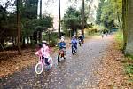 Děti z královéhradecké MŠ Štefcova na kolech na stezce v městských lesích.