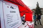 Prodej vánočních psů - akce na hradeckém náměstí 28. října.