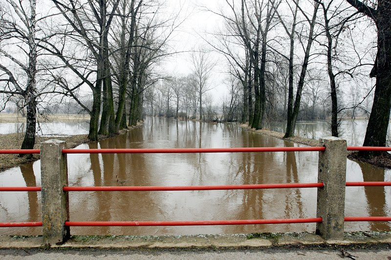 První povodňový stupeň platí na řece Cidlině na královehradecku. Zaplavené louky v okolí Nového Bydžova.