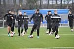 Jako první vstoupili do zimní přípravy fotbalisté FC Hradec Králové B. Na malšovické umělce se proběhli s míčem.
