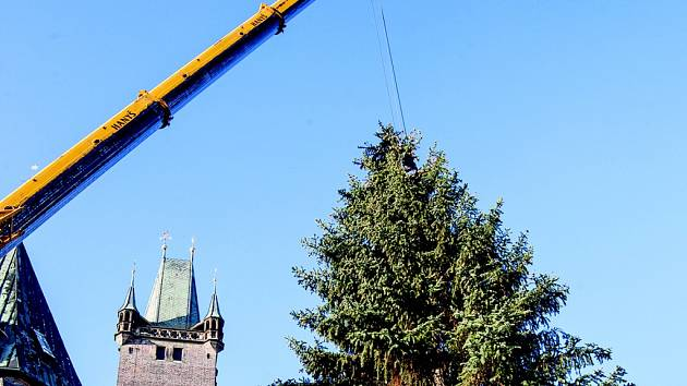 Manipulace s vánočním stromem na královéhradeckém Velkém náměstí.
