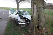 Řidič nezvládl jízdu a narazil do stromu.