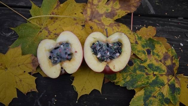 Krmítko pro ptáčky z jablka.
