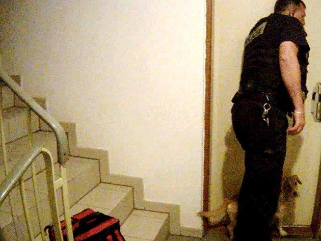 Strážník se psem u dveří bytu.