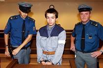 Hradecký krajský soud poslal na dva a půl roku do vězení s dozorem dvatenáctiletého Petra Giňu. Trest udělil soud mladíkovi za spáchání trestného činu pokusu o znásilnění čtrnáctileté dívky.