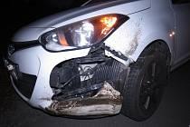 Řidička srazila klokana, po majiteli zvířete se nyní pátrá