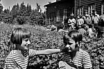 Jak jsme žili v Československu: historie letních táborů.