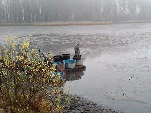 Výlov rybníku Výskyt