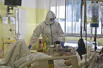 Práce na Klinice infekčních nemocí hradecké fakultní nemocnice.