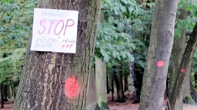 S kácením drtivá většina místních nesouhlasí. Svůj názor na vykácení 25 listnatých stromů v Malšovicích vyjádřili nejen peticí, ale i cedulkami na označených stromech.