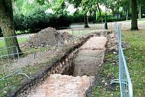 Část císařské cesty odhalil v loňském roce archeologický průzkum. Studie se zaměřuje i na současný stav stromů.