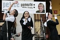 Kampaň nazvaná Pomozte svému divadlu v Hradci Králové.