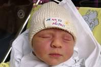 Sofinka Hynková se narodila 10.února 2019 ve 20.40 hodin. Po narození vážila 3540 g a měřila 51 cm. Svým příchodem na svět velmi potěšila své rodiče Martinu Juričkovou a Pavla Hynka z Hradce Králové. Doma se na ní těší sestřička Elenka.