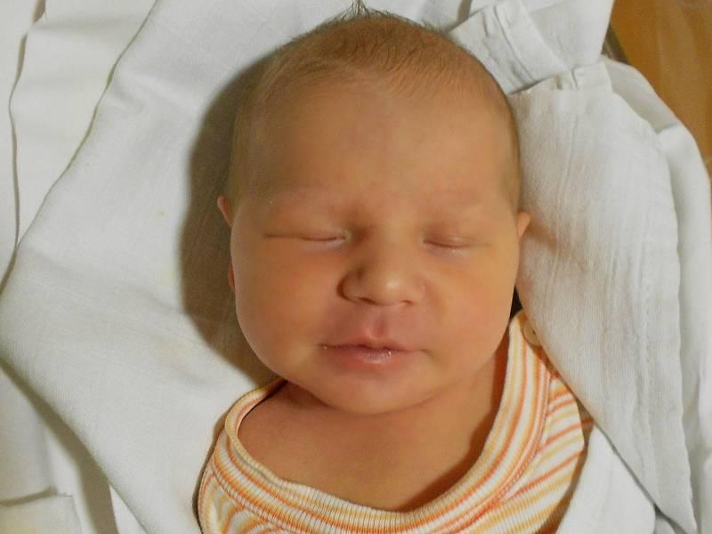 EMA ŠREFLOVÁ přišla na svět 26. září v 18.37 hodin. Měřila 49 cm a vážila 3120 g. Velmi potěšila své rodiče Anetu a Miroslava Šreflovy z Rychnova nad Kněžnou. Doma se těší bráška Matěj. Tatínek to u porodu zvládl skvěle.