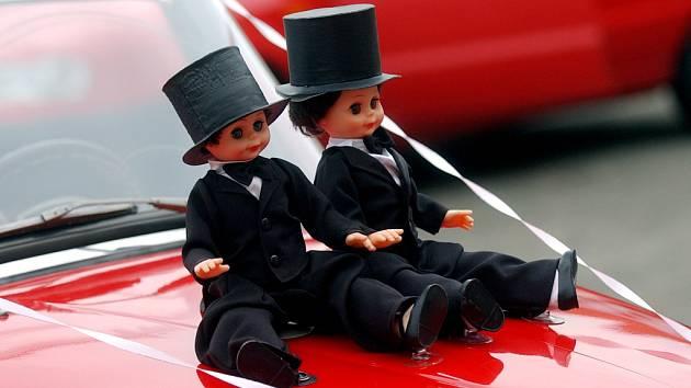 Legalizovat homogenní soužití se přejí více muži