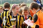 Fotbalový turnaj starších přípravek O pohár kapitána na Novém Hradci Králové.