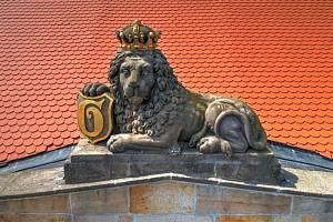 Lví stezka.