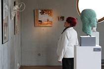 Výstava hořické sochařské školy v galerii U Přívozu v Hradci Králové.