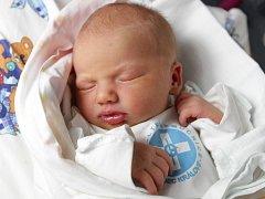 Sára Jiroutová se narodila 21. ledna ve 23.40 hodin. Měřila 49 centimetrů a vážila 3190 gramů. S rodiči Danou a Alešem Jiroutovými  bydlí v Hradci Králové.