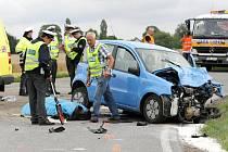 Dva lidské životy si 3. srpna vyžádala dopravní nehoda osobního vozidla a servisního vozu záchranné služby, která se stala po 13 hodině na silnici u obce Lejšovka na Hradecku.