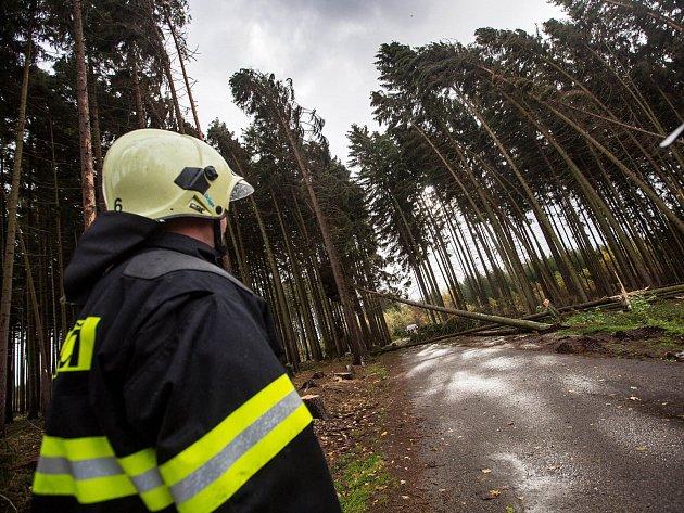 Hasiči na Královéhradecku zasahují udesítek případů popadaných stromů