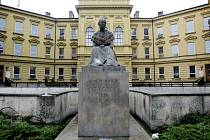 V Hradci Králové je po Boženě Němcové pojmenováno gymnázium, před kterým je její sedící socha.