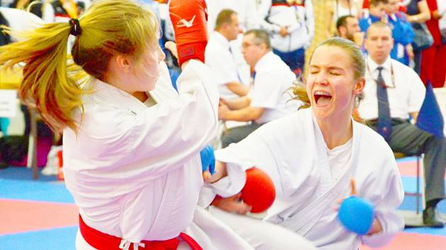 Grand Prix Hradec Králové, turnaj Světového poháru v karate.