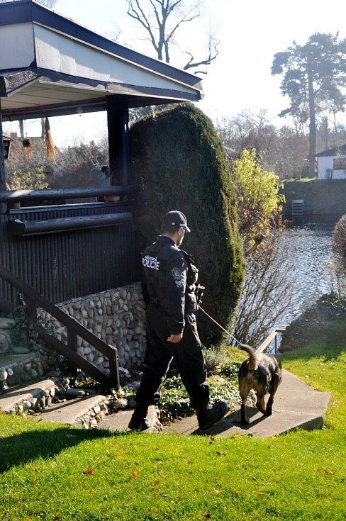 Strážníci při kontrole chatové kolonie.