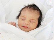 Sofie Lacourt se narodila 19. března v 9.02  hodin. Měřila 47 centimetrů a vážila 2860 gramů. S rodiči  Evou a Pavlem Lacourtovými bydlí v Dolním Přímu.