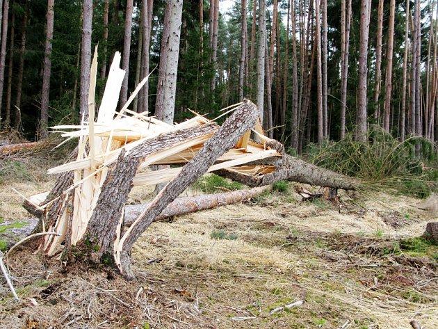 Větrem napáchané škody v lesích.