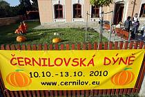 V Černilově byla zahájena výstava Černilovská dýně.